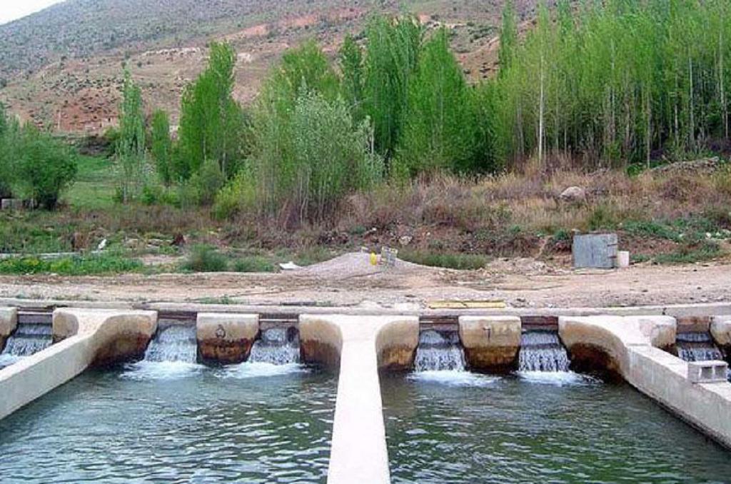 منابع آب پرورش ماهی