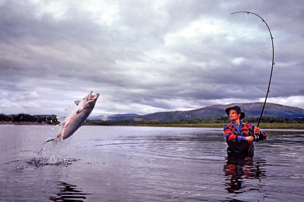 آموزش ماهیگیری