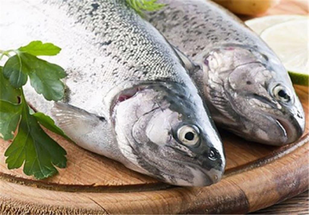 نکات خرید ماهی تازه