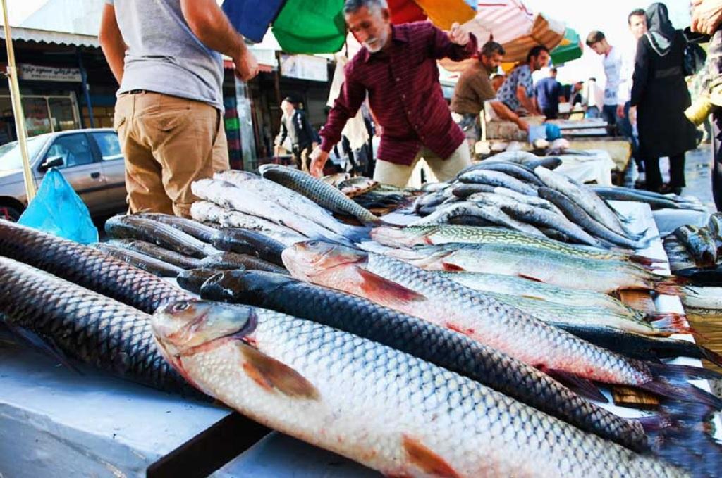بازار ماهی