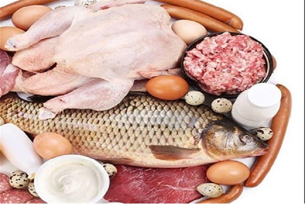 بسته بندی مرغ گوشت ماهی