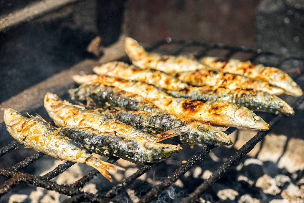 بهترین ماهی ها برای سلامت مردان