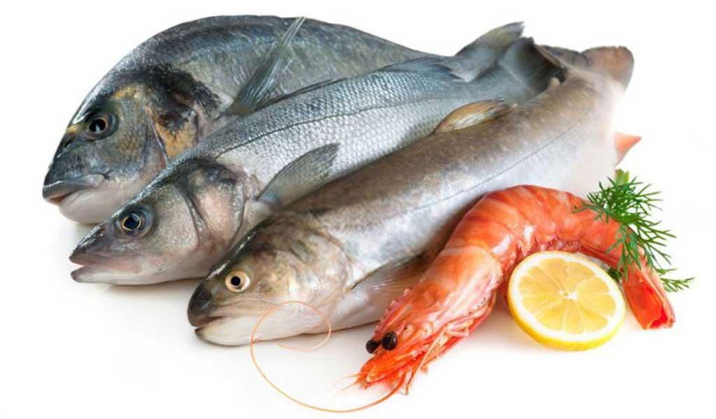 فروش آنلاین ماهی